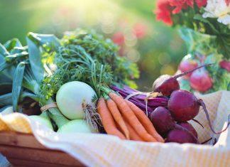 Dado vegetale fatto in casa   Maria Teresa Nivuori   Biologa Nutrizionista a Torino