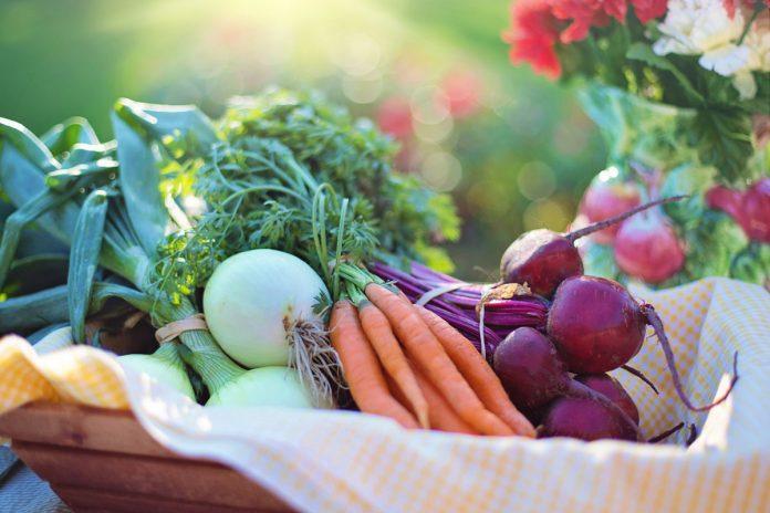 Dado vegetale fatto in casa | Maria Teresa Nivuori | Biologa Nutrizionista a Torino